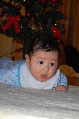 王子のクリスマス.JPG